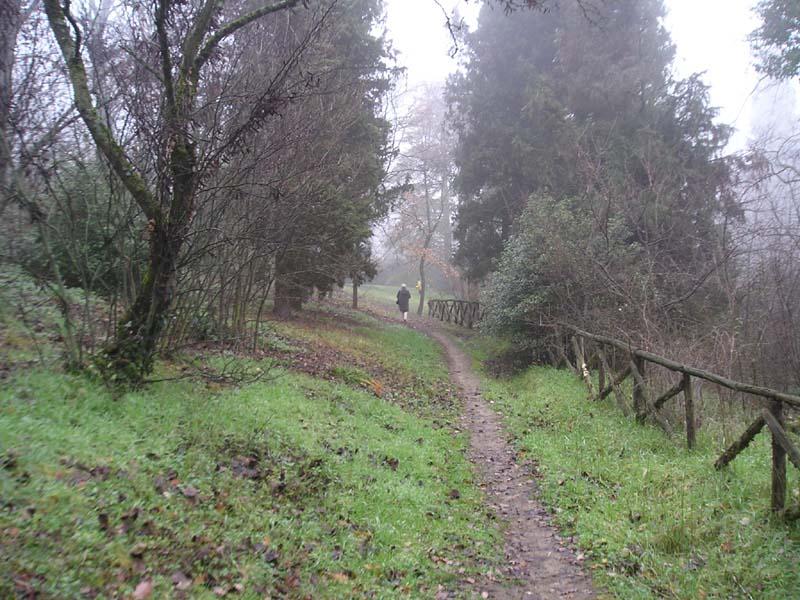 Sentieri del parco in gennaio