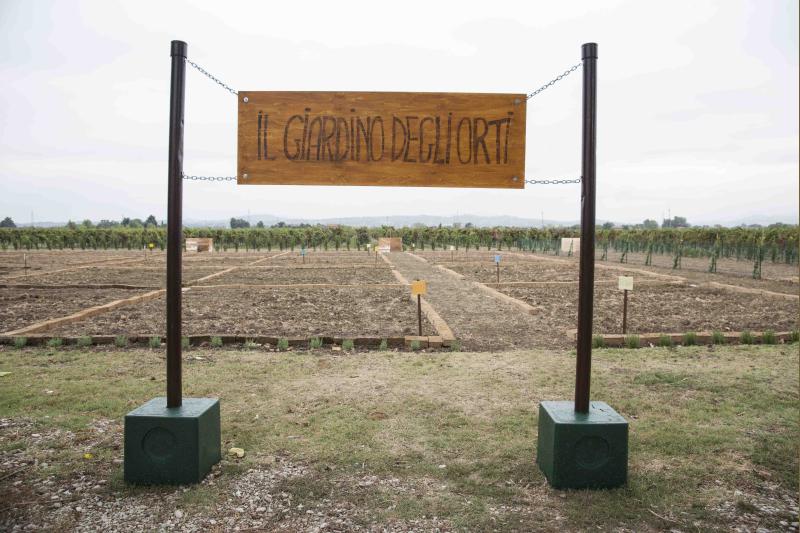 """""""La Tartaruga"""" dedica una giornata alle colture sinergiche e biodinamiche"""