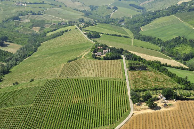 Il Vitalba Albana della famiglia Navacchia fra i migliori vini del mondo