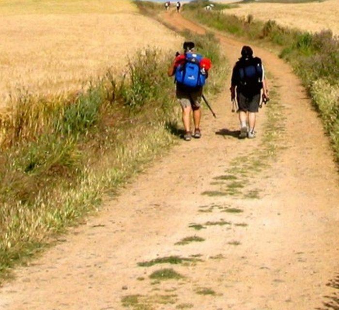 Diari di viaggio, parole e immagini di un'estate diversa