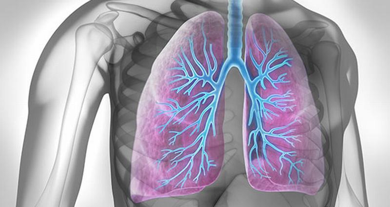 Imola e circondario, le malattie respiratorie sono la prima causa di morte