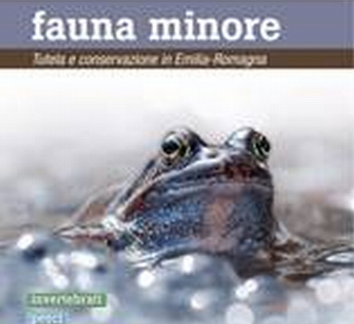 Un volume sulla fauna minore