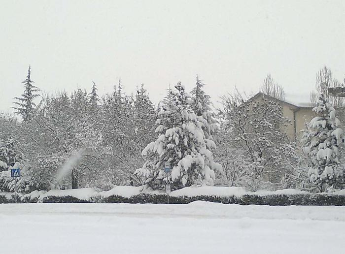 Neve: quanto ci costi
