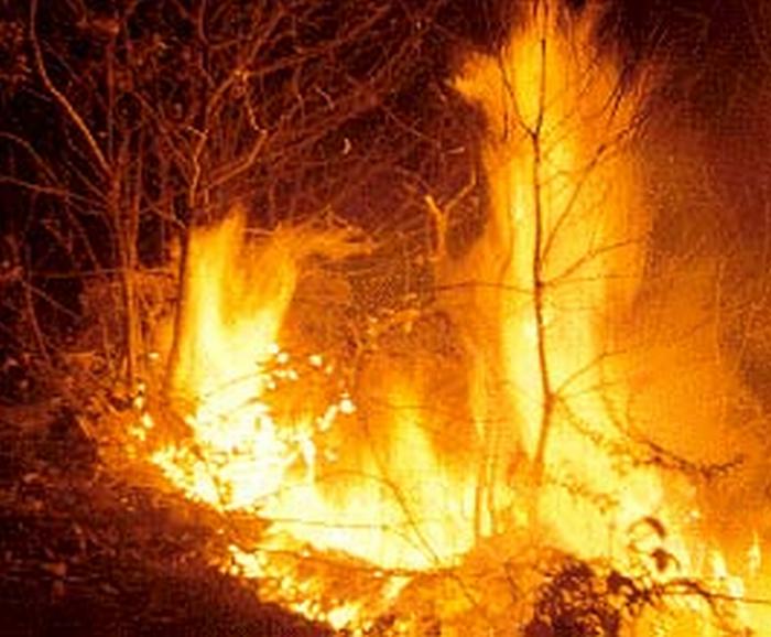 Rischio incendi con le temperature alte