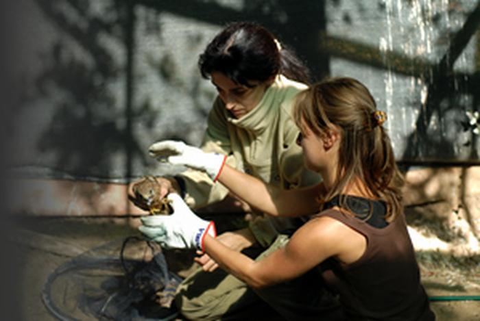 Fauna esotica e selvatica a due passi da Bologna