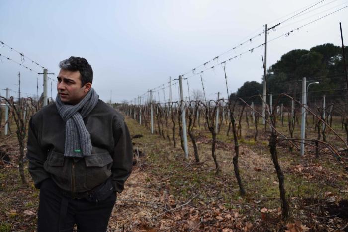 Augusto Zuffa fra i massimi esperti europei di vino biologico