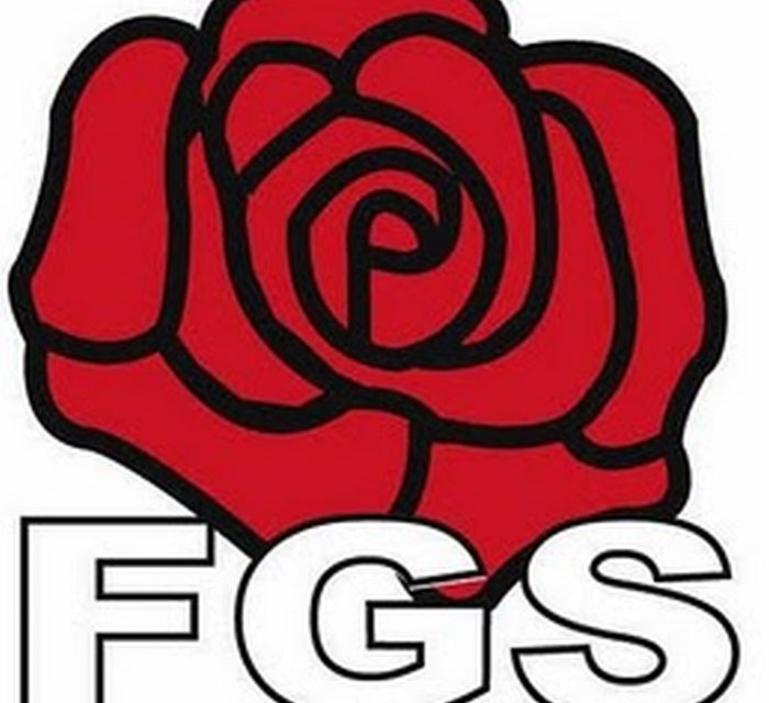 La riorganizzazione dei Giovani socialisti