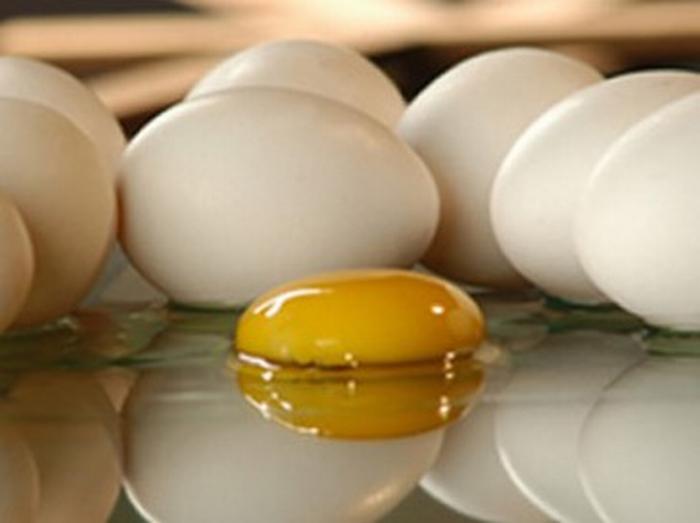Prevenzione dall'intossicazione da salmonelle