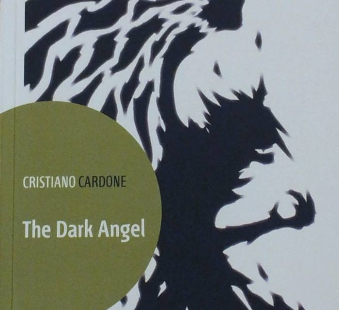 "I misteri di ""The Dark Angel"""