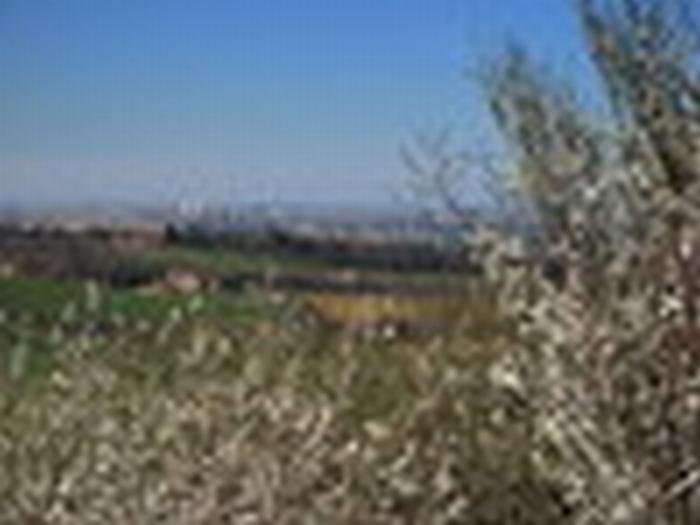 Ritrovato l'anziano sparito da casa a Varignana