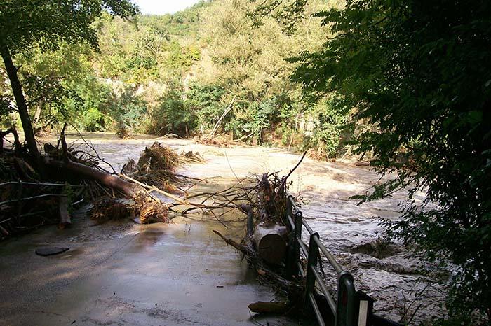Dodici famiglie bloccate dalla piena del fiume