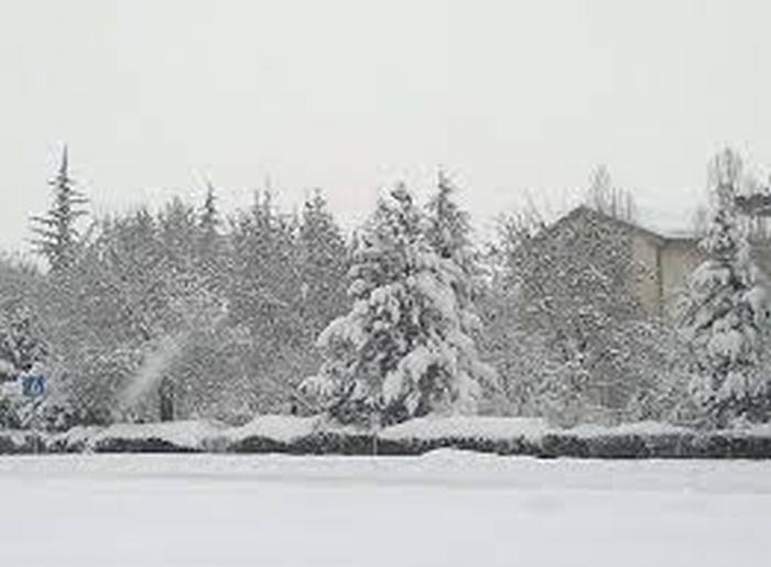Grande nevicata, Il Comune va risarcito