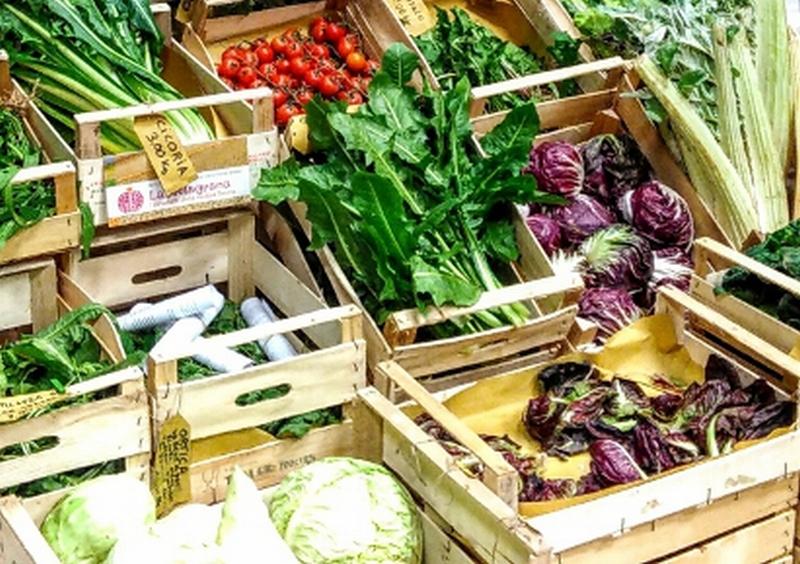 2050, tutti vegetariani. Ecco la dieta del futuro