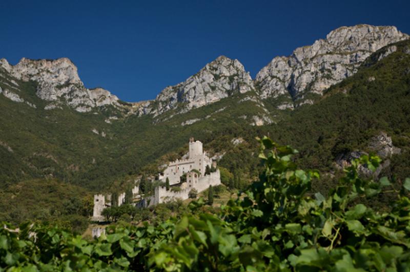 Scopri i volti del Trentino con la Guest Card
