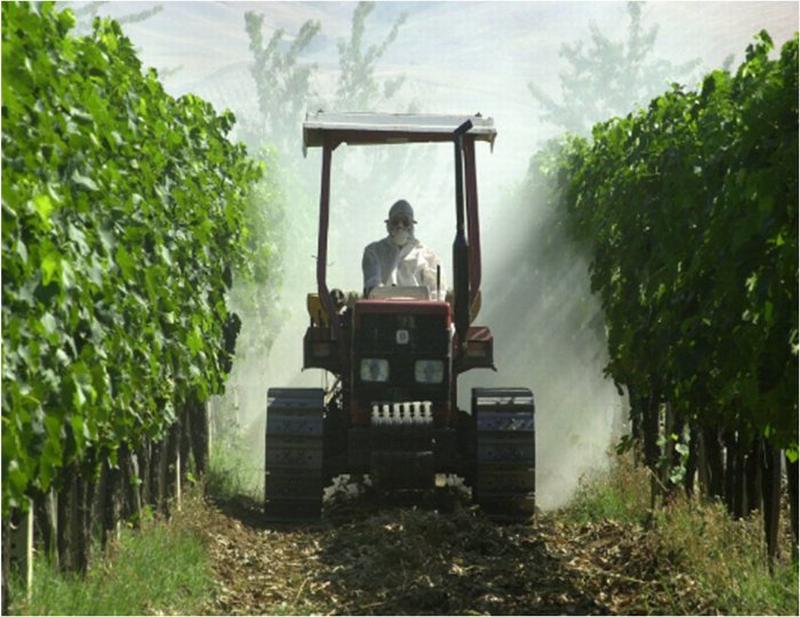 I pesticidi in Italia