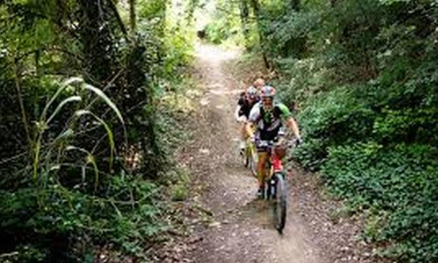 """Percorso in 3 tappe per conquistare il ciclobrevetto """"Romagna 4 Bike"""" di IF"""