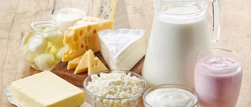 Baccanale del latte al via con l'introduzione di Massimo Montanari