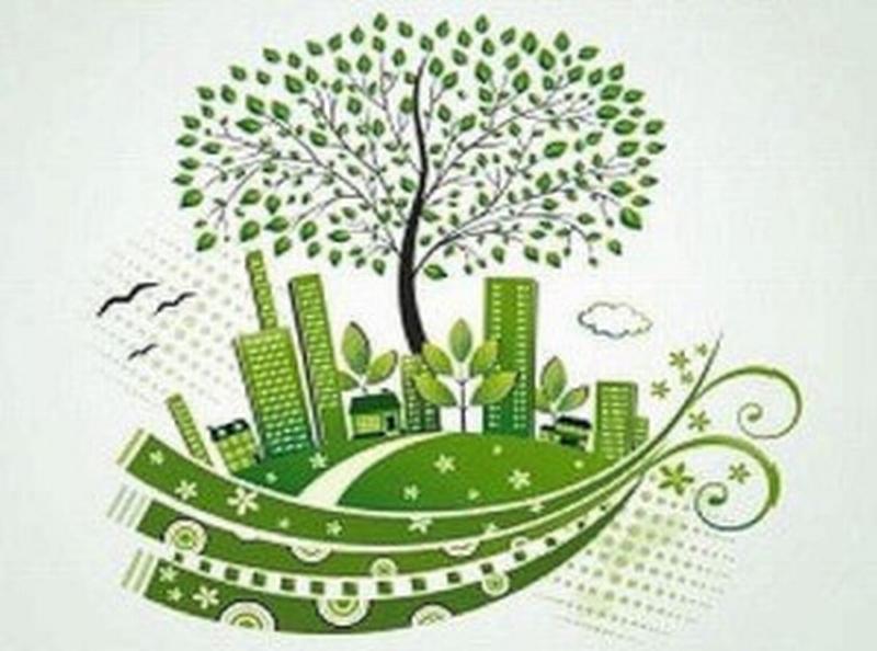 """""""Giornata nazionale dell'albero"""", arrivano 300 nuove piante"""