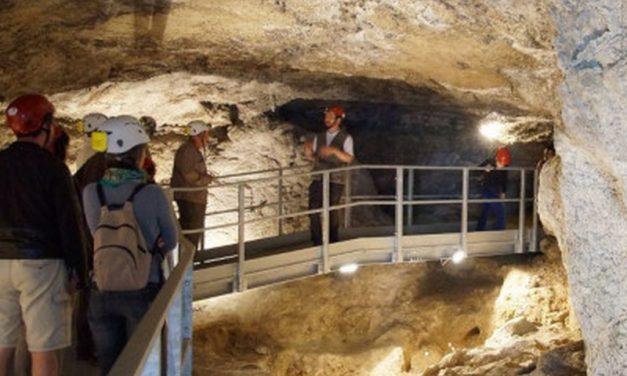 Rinnovato il museo geologico del Monticino con tante novità