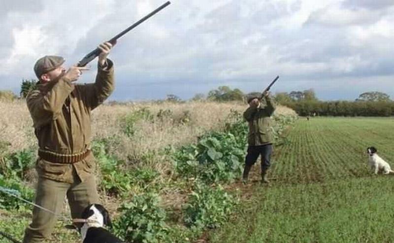Terreni agricoli senza cacciatori, lo dispone una legge regionale