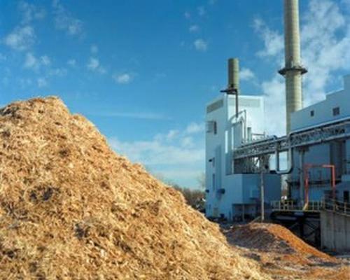 Legambiente attacca gli impianti a biomasse