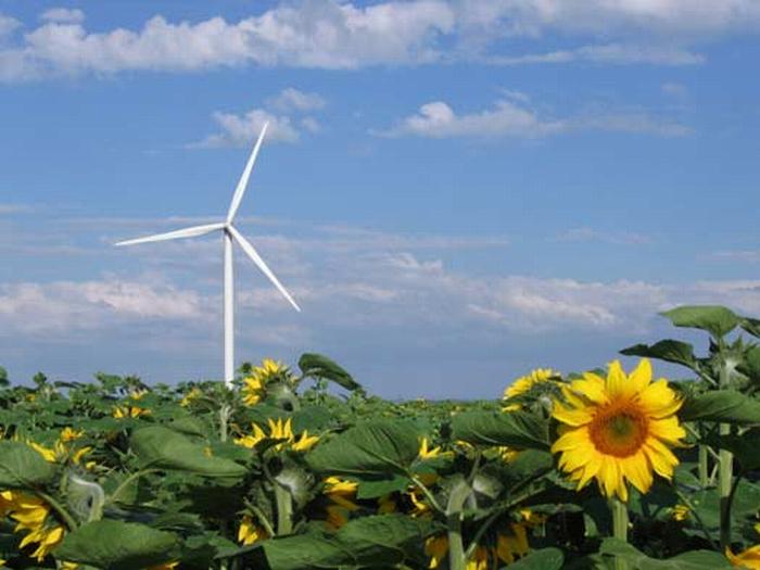 Le rinnovabili non fotovoltaiche nel 2013, l'inizio di una nuova Era