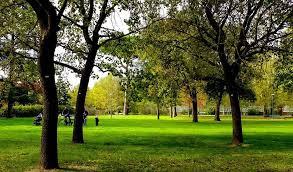 """Il """"Parco dell'Amicizia"""" degli alunni delle scuole di San Prospero"""