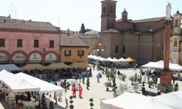 Elezioni amministrative 2019: Castel S. Pietro, un bel banco di prova