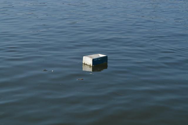 """""""Fishing for litter"""", il monitoraggio di Legambiente contro la plastica"""