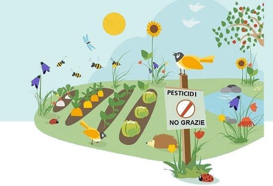 Pesticidi, tre incontri per saperne di più