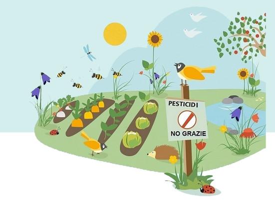 """Tante iniziative per la """"Marcia no pesticidi"""""""