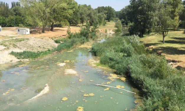 """""""Dialoghi sul Santerno"""", si parla di acque"""