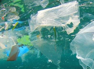 La plastica e Noi