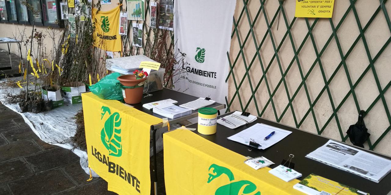 Successo della Festa dell'Albero di Legambiente, oltre 1400 piante distribuite