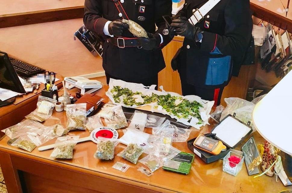 Aveva in casa un laboratorio per la produzione di marijuana, arrestato
