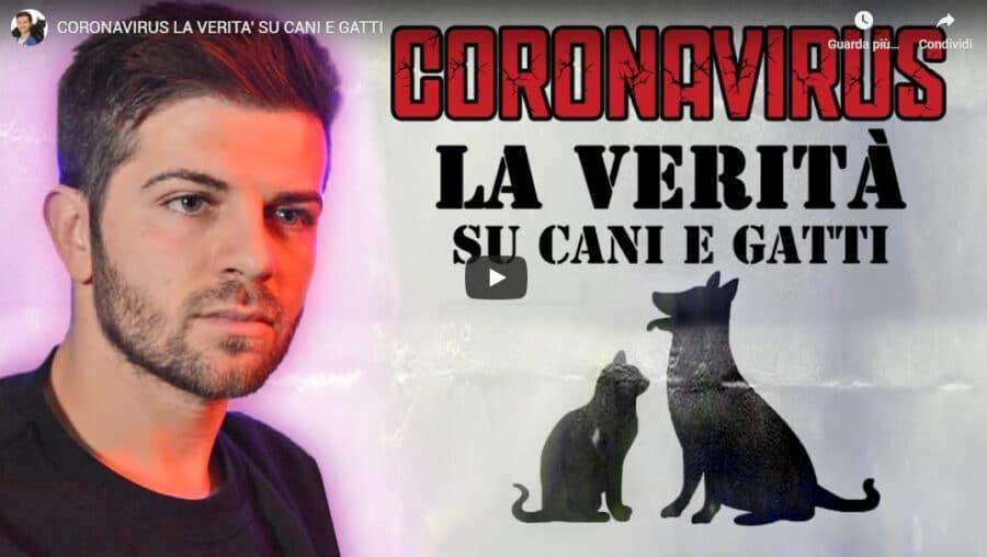 Coronavirus: la verità su cani e gatti