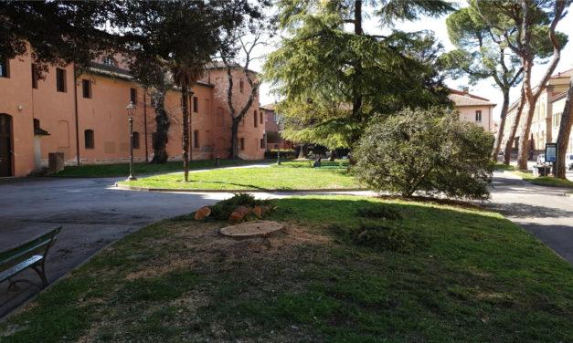 "Abbattuti nel giardino Rambldi due alberi considerati ""ammalati"""