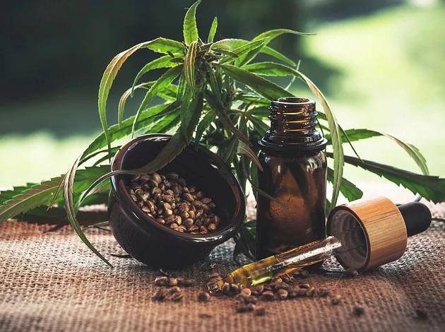 I benefici dei semi di cannabis