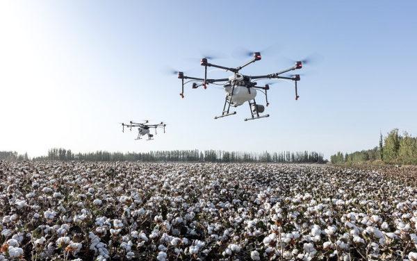 Droni in fuga da Medicina