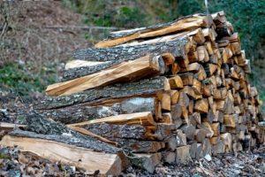 legna ardere legname