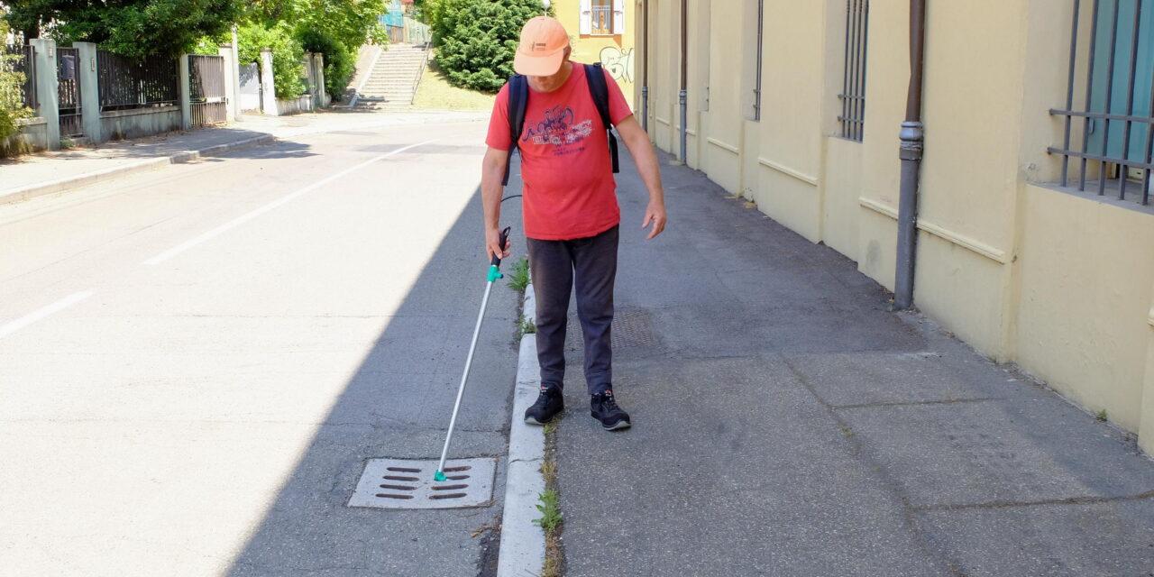 Faenza, inizia la lotta alla zanzara tigre