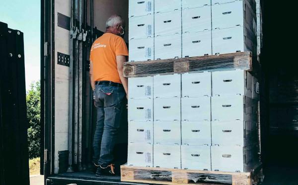 Banco alimentare: da Faedesfa arrivano 30.000 colombe