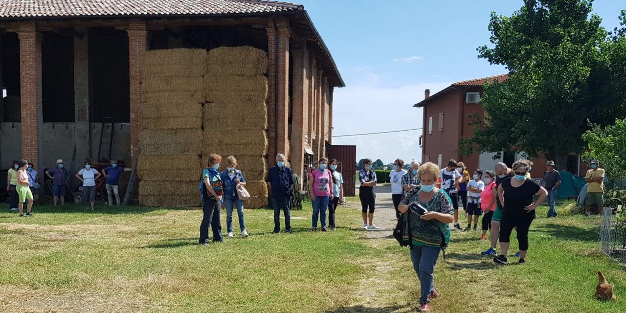 L'Estate Castellana propone una camminata a Liano e nei vicini calanchi