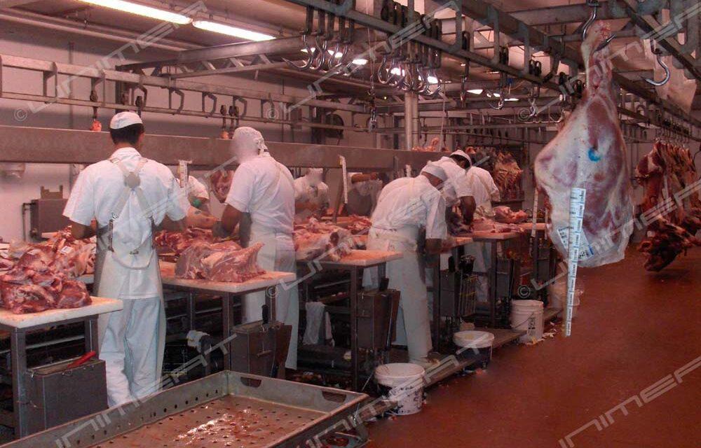 Coronavirus, tamponi per tutti i lavoratori della logistica, del settore carni e arrivi paesi extra Schengen