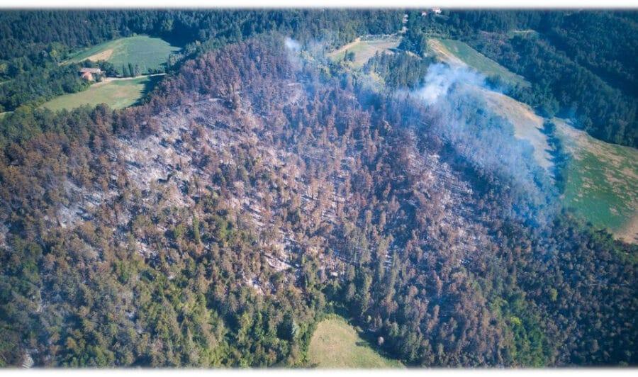 Incendio monte Battaglia: situazione in miglioramento