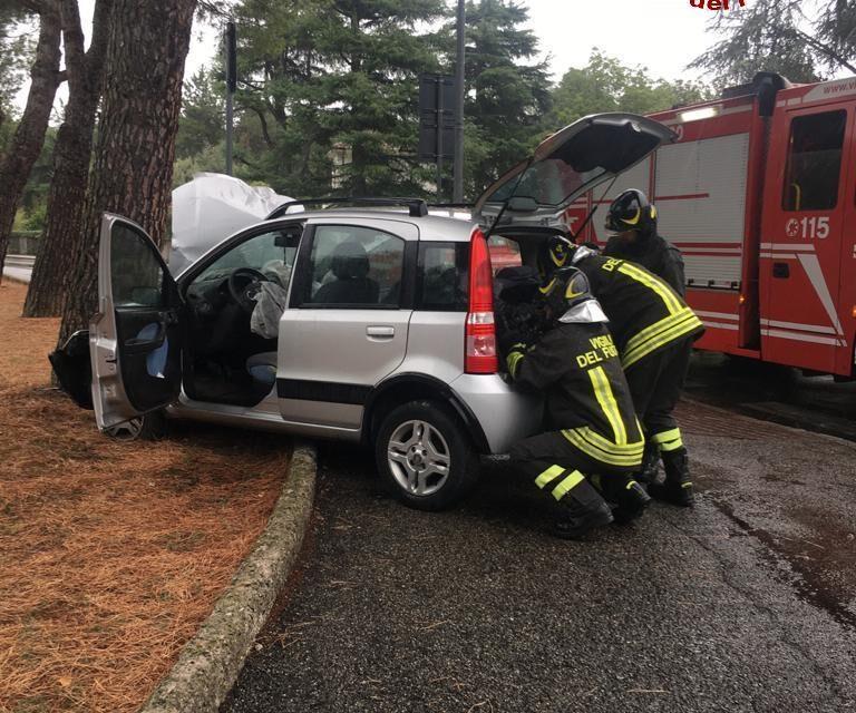 Un'auto finisce contro un pino, il conducente trasferito al Maggiore