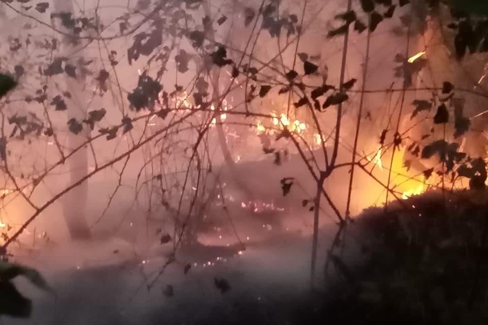 Monte Battaglia: ancora in corso le operazioni di spegnimento dell'incendio