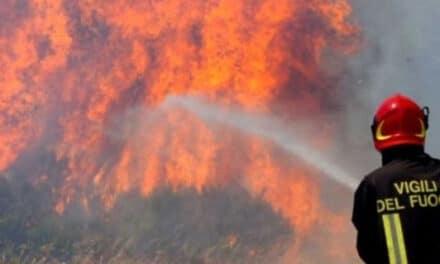 Monte Battaglia (Casola Valsenio): le fiamme devastano diversi ettari di  bosco