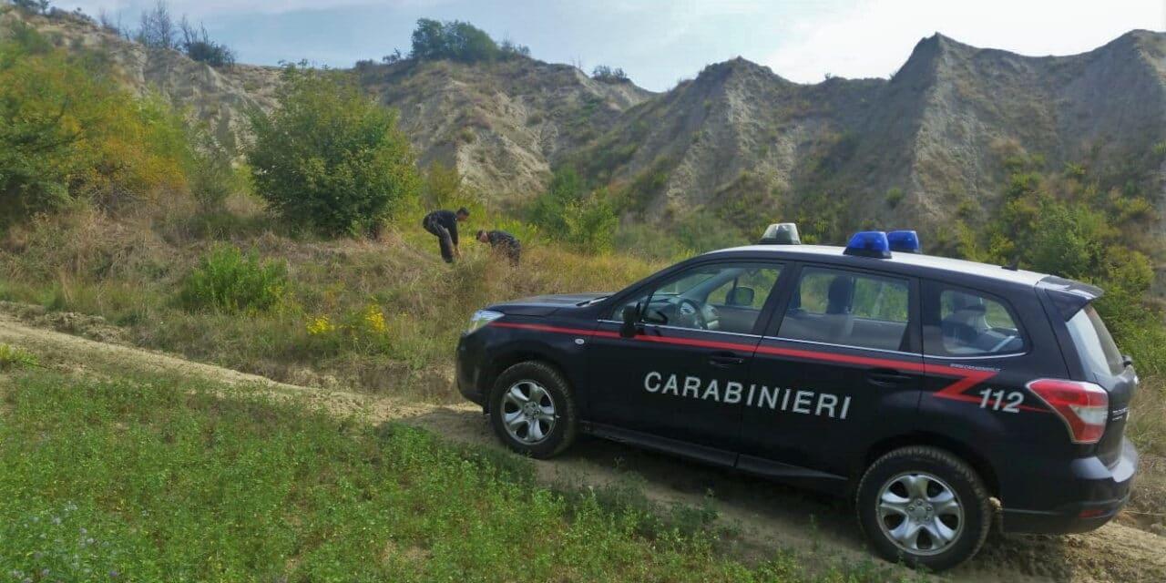 Visti dai carabinieri mentre stavano coltivando una pianta di canapa indiana