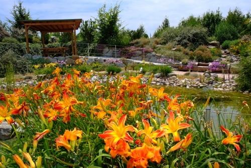 Il Giardino degli Angeli fra i migliori luoghi del cuore della FAI: si vota ancora